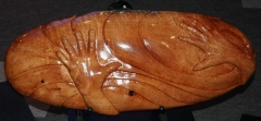 Living in Harmony Respect Elders (silky oak) 2007